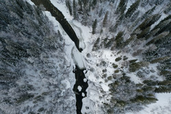 Willow River Overhead (1 of 1)