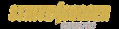 Strive4Soccer_logo_edited_edited.png