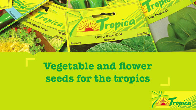 New promo video form our Tropica brand.