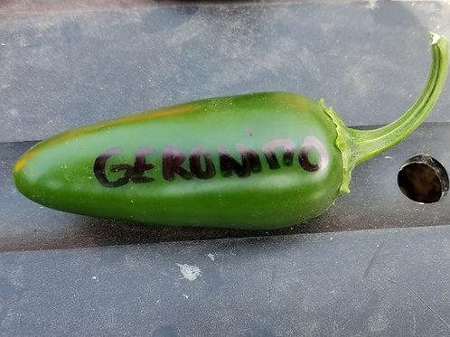 Hot Pepper F1 GERONIMO