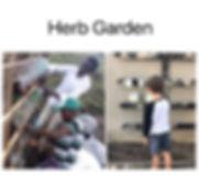 HerbGarden.JPG