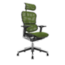 Ergo Human Elite Headrest..png