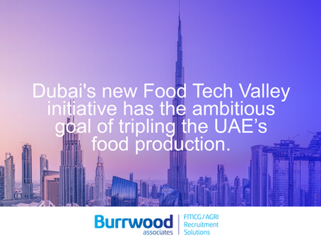 Dubai set to revolutionise farming with new Food Tech Valley