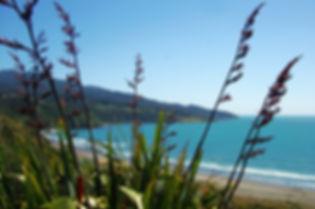Raglan, New Zealand, harley tour NZ. Harley motorbike ride NZ