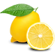 Lemon-Transparent-Background.png