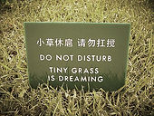 do not disturb Tiny grass is dreaming