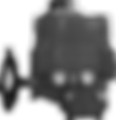 NAY Series (Grayscale).png