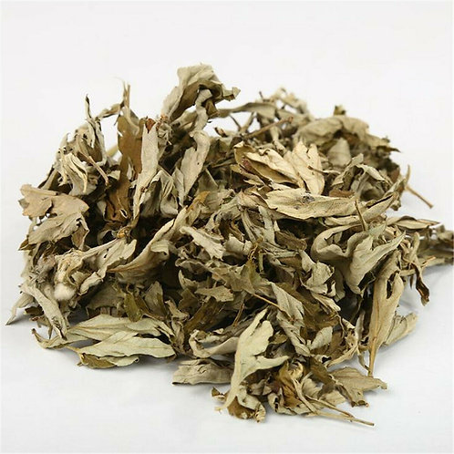 Mugwort Dried Herb