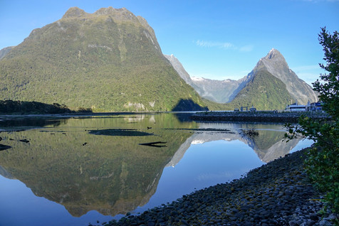 The amazing Milford Sound
