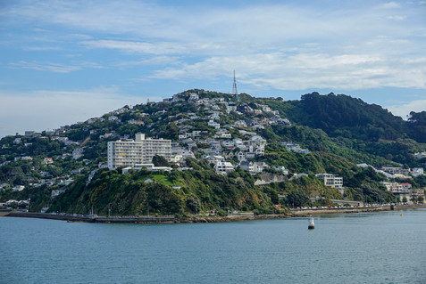 Wellington, Te Papa and the environment