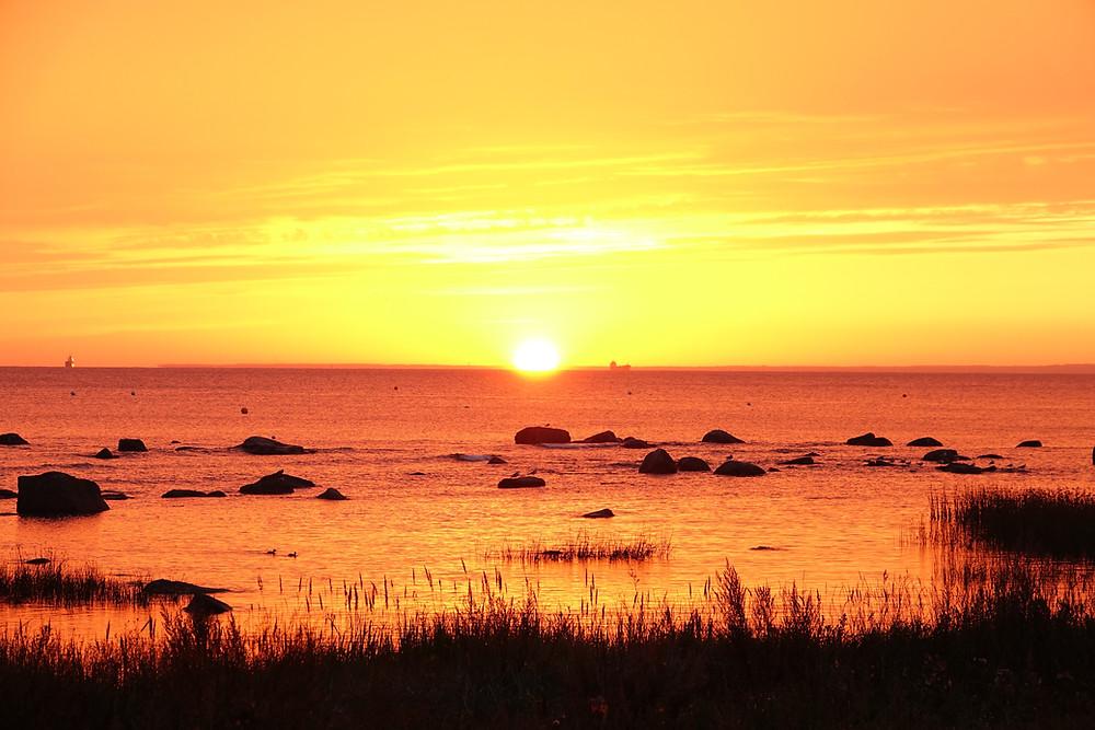 Sunrise Tallinn