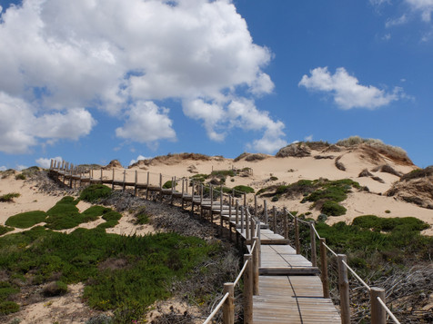 Boardwalks, Island Paddleboarding and Portuguese Aires