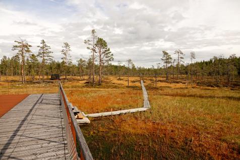 Sweden's National Parks