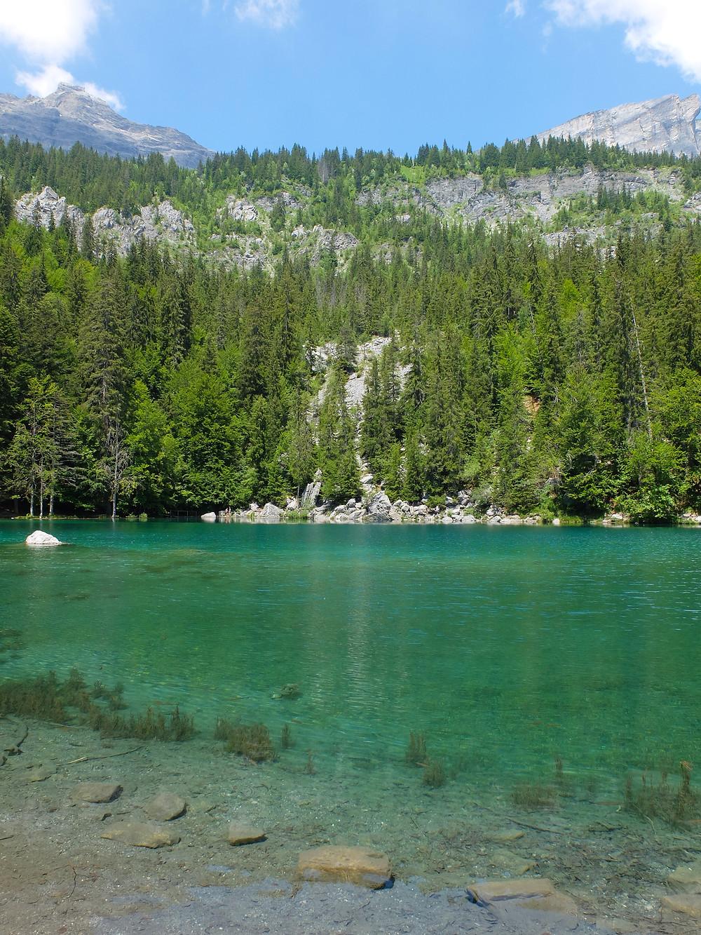 Lac Vert Chamonix