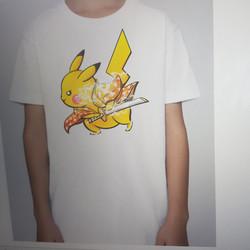Fans pokemons