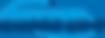 SVLG logo.png