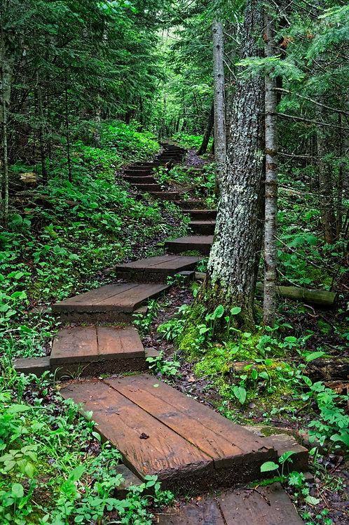 Tettegouche Stairway