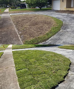 Another Great #Sod job by us at #csdesig