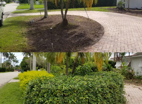 Csdesignerlandscaping. Got to one of our #clients #home. This is the Ending #Results