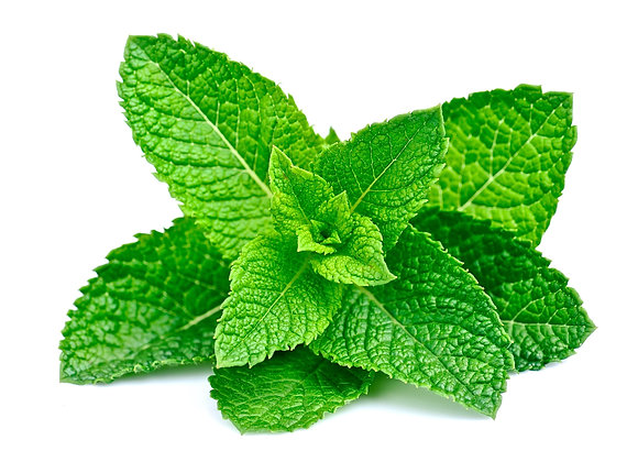 Peppermint (Organic) 10ml or 15 ml diluted to 25%  in  jojoba