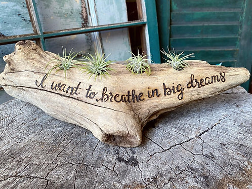 I want to breathe in big dreams