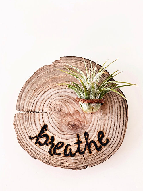 2 inch breathe with air plant magnet