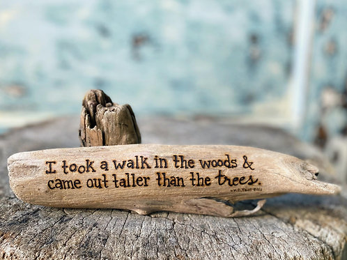 """""""I took a walk in the woods and came out taller than the trees."""" -Henry David Th"""