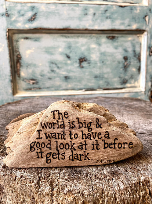 The world is big and I want to have a good look at it before it gets dark.-John