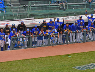 Mustangs Defeated by No. 12 Cowley in Elimination Game to End JUCO World Series Run