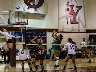 Volleyball Opens Season with Sweep of Pace, 3-0