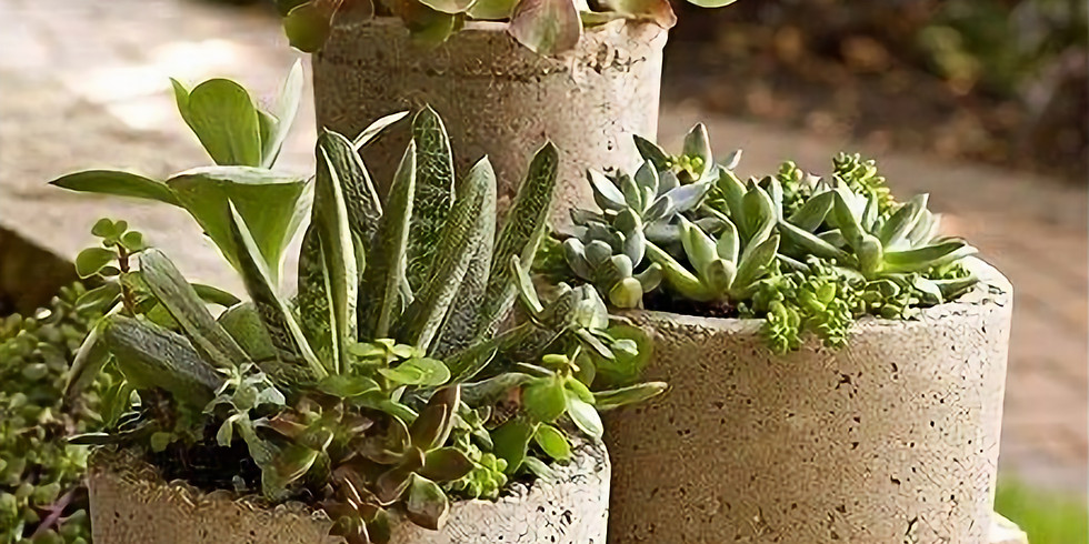 Set in Stone: Hypertufa Planters and Pavers