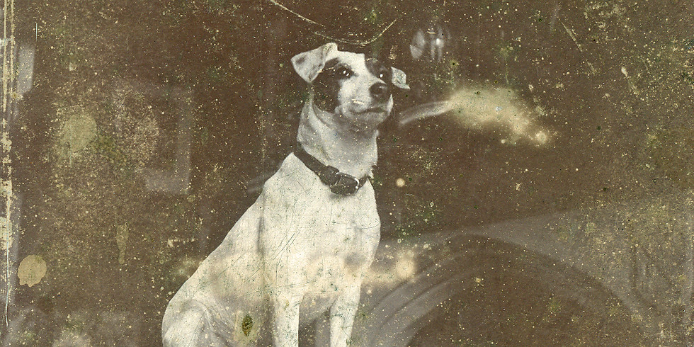Dog Day After Noon: Bow-wow Story Hour at Clermont
