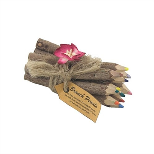 Flowers Branch Colored Pencils Set of 12