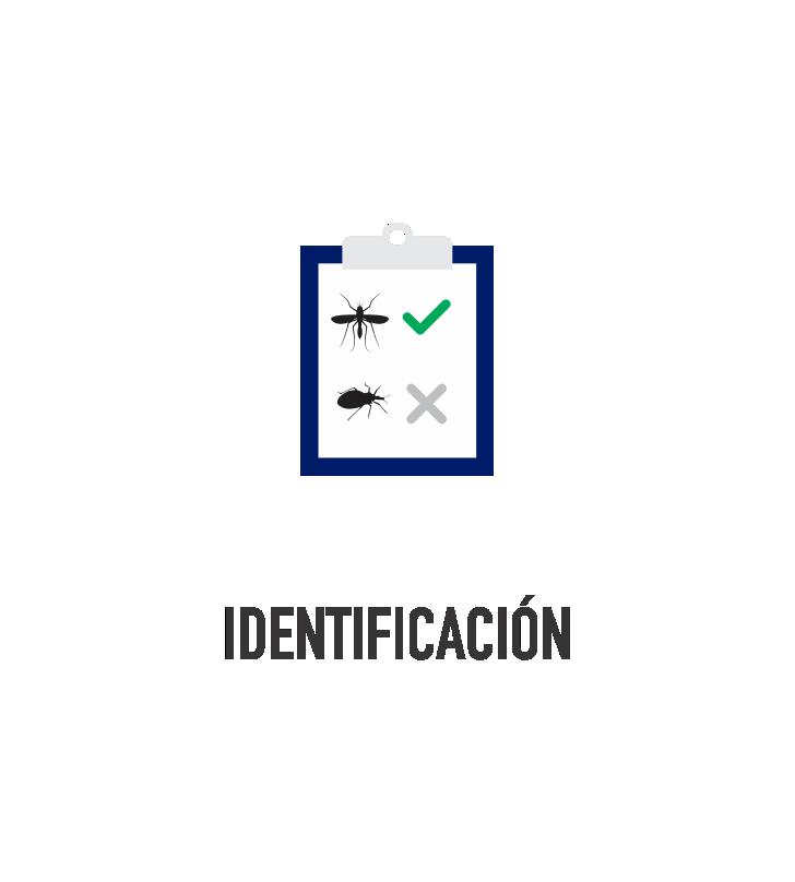 identificación_color.png
