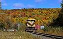 fall train.jpg