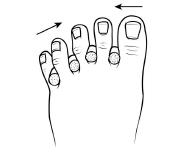 Lower Limb Exercises