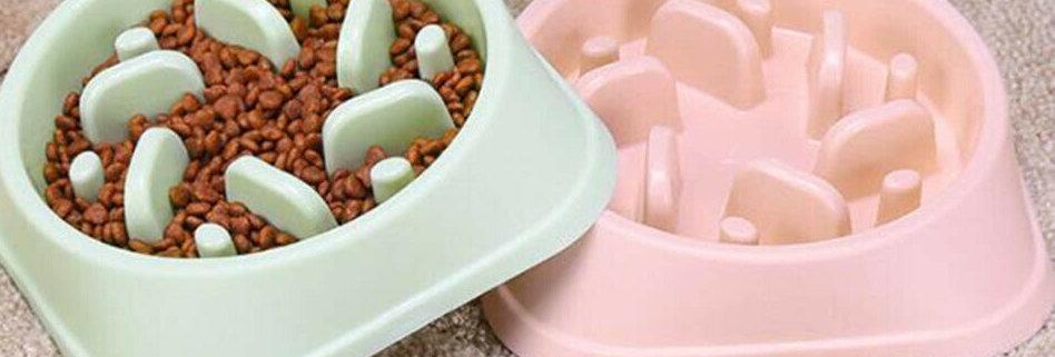 Slow Feed Dog Bowl