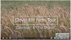 "Clover Hill Farm Tour - ""Coleridge"" & ""The Shanti"""