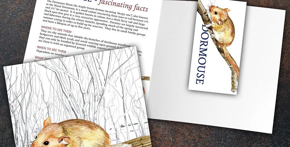 Dormouse Card & Bookmark