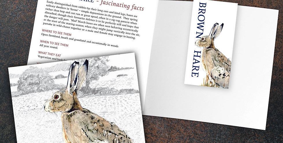 Hare Card & Bookmark