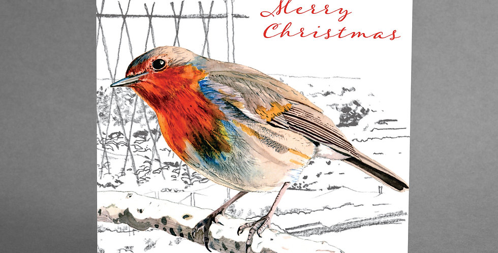 Robin Christmas Cards Pack of 6