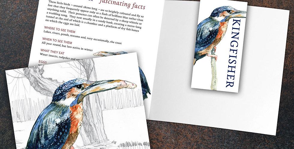 Kingfisher Card & Bookmark