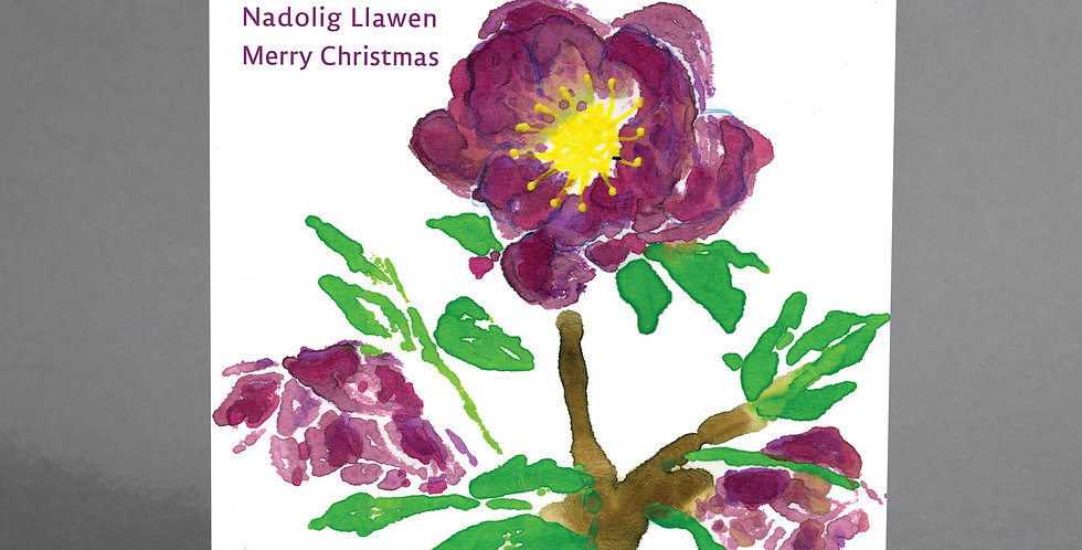 Welsh Christmas Rose Cards - pack of 6