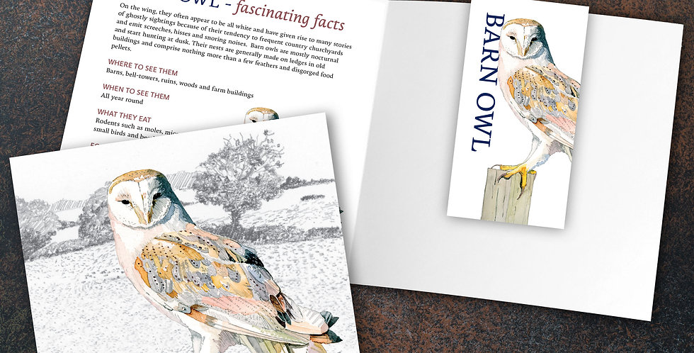 Barn Owl Card & Bookmark