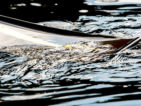 OM represents GB in rowing