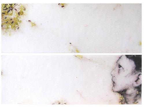 "Sibylle Peretti - ""The Beekeeper"""