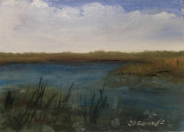 "Doris Ingle- ""Looking Into The Marsh"""