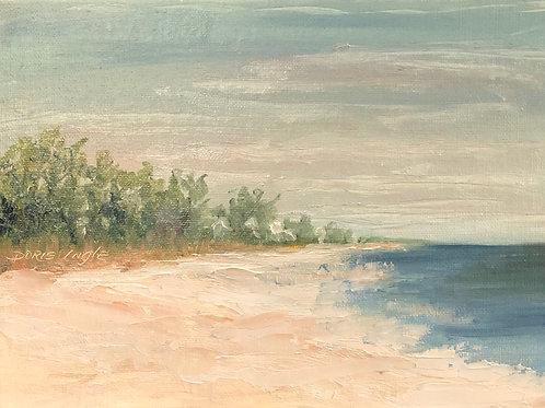 "Doris Ingle- ""The Oaks From The Beach 5"" x 7"" oil. $80"""