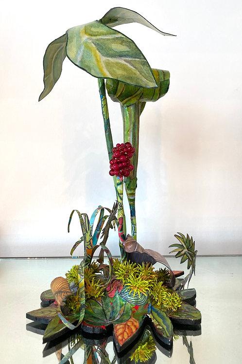 "Pamela Tripp - ""Jack-in-the-Pulpit"""
