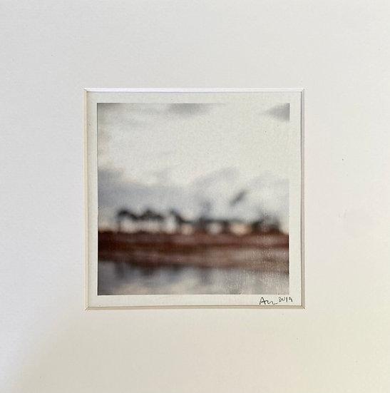 """Ann Dinwiddie Madden- """"Pines, Cat Island"""""""